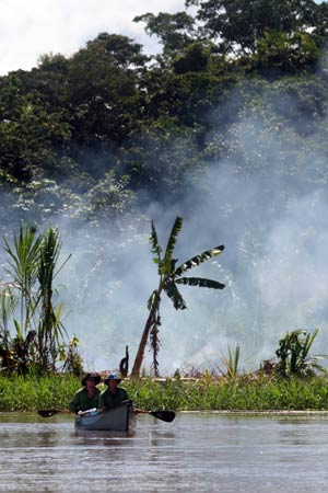 Trans-Amazon Expedition: Seasonal changes of the Amazon