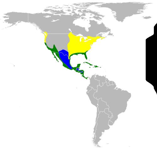 Green Heron Map